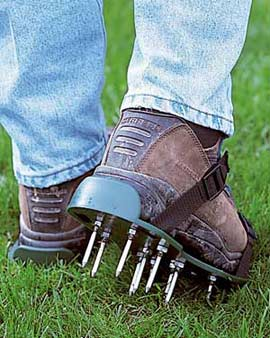 aerating lawns in Nashville