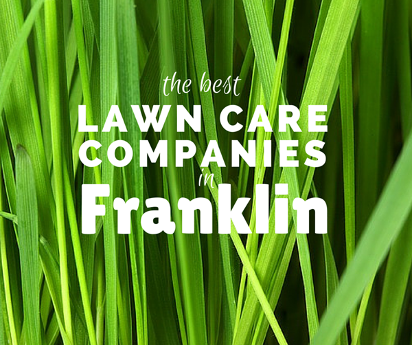 lawn care franklin