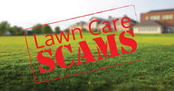 Pure-Green-Lawn-Care-Scams-2.jpg