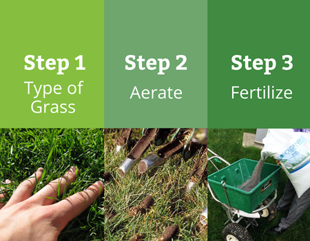 Best Time To Fertilize Middle Tennessee Nashville Lawn Care